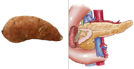 sweet-pancreas